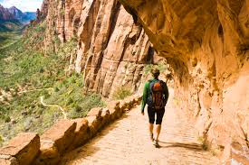 what to do at zion national geographic