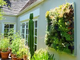 plants on walls vertical garden systems gilman succulent garden