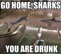 Drunken Memes - 36 very funny drunk meme will definitely make you laugh picsmine