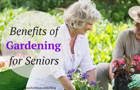 benefits of gardening for seniors jpg