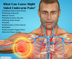 Right Side Human Anatomy What Can Cause Right Sided Underarm Pain