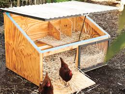 how to build a chicken coop including free plans sunset