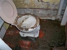 worlds worst bathroom disasters abode