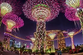 gardens by the bay singapore garden city youtube