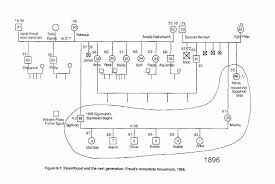 genograms and the family life cycle