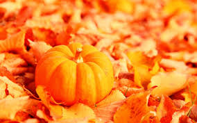 halloween background wide misc fall autumn golden seasonal halloween cool cute october