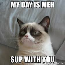 Sup Meme - my day is meh sup with you grumpy cat meme generator