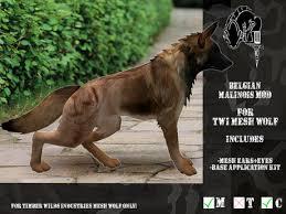 belgian shepherd timberwolf second life marketplace cmfl twi wolf belgian malinois mod