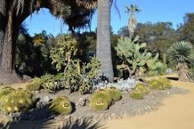 desert landscaping ideas u2013 recreate the beauty uniqsource com