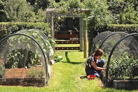 garden arbor cheap garden