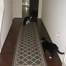 Rugs For Dark Floors Floors U0026 Rugs Mondrian Kazak Hallway Runners With Dark Wood Floor