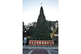 st armands shines bright at holiday night longboat key your