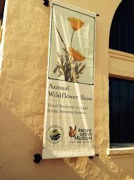 san diego native plant society susan krzywicki u2013 page 12 u2013 california native plant society blog