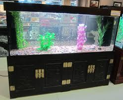 aquarium fish tank decoration aquarium plants pinterest