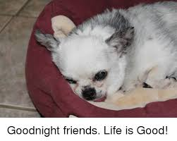 Good Friends Meme - goodnight friends life is good friends meme on astrologymemes com