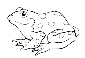 Printable Frog Colouring Pages For Preschoolers Coloring Point Frog Colouring Page
