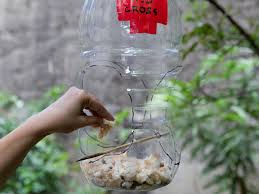 how to build a milk jug bird feeder 12 steps with pictures