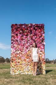 flower walls flowering wall gardens