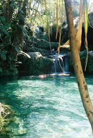 Natural Pools by 74 Best Natural Pool Images On Pinterest Pool Ideas