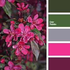 Pink And Grey Color Scheme 2353 Best Colorspiration Images On Pinterest Colors Color