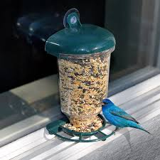 clear plastic window bird feeder graybunny
