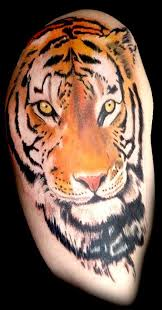 lapse tiger cover up