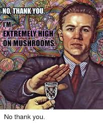 Thank You Funny Meme - no thank you i m extremey high on mushrooms funny meme on