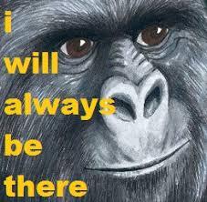 Gorilla Munch Meme - v video games thread 322277903