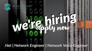 Telecom Network Engineer Resume Blue Ocean Business Partners Linkedin