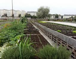 lancement des parcours de compétences en agriculture sur le revue sur mesure agriculture urbaine et économie sociale et