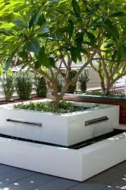 Best 25 Contemporary Gardens Ideas On Pinterest Contemporary