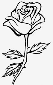 line art drawings google search coloring pages