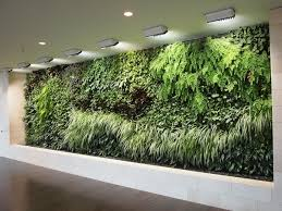 How To Make A Succulent Wall Garden by Plain Design How To Build A Living Wall Marvellous Ideas How To