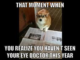 Eye Doctor Meme - don t make the same mistake as cathy the corgi call and schedule