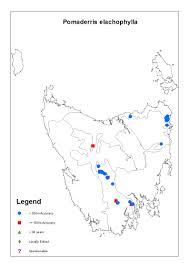 Elac Campus Map Pomaderris Elachophylla Threatened Species Link
