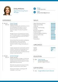 Project Manager Resume Templates Digital Marketing Project Manager Resume Example Format Tar Saneme
