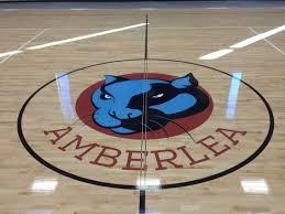 amberlea elementary logo glendale arizona gym floor