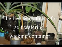 the best wick to use in self watering containers youtube