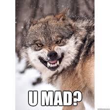 Mad Wolf Meme - u mad u mad wolf quickmeme