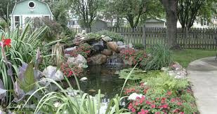 Pictures Of Backyard Ponds by Water Garden Ecosystem Ponds Backyard Pond Designs Aquascape