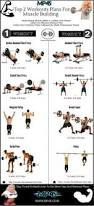 workout plans to build strong muscle mass