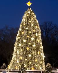 the white house christmas tree vs congress u0027s tree which is