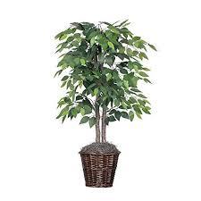 floor plants home decor artificial ficus trees for home decor indoor amazon com