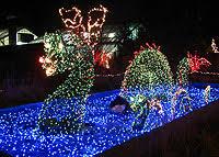 christmas lights in maryland christmas light shows in virginia maryland washington d c