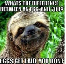 Sloth Jokes Meme - sloth ifunny