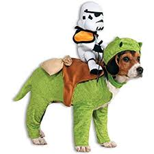 Dog Shark Halloween Costume Amazon Rubie U0027s Shark Pet Costume Medium Pet Supplies