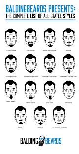 Type Of Hairstyles For Guys by 15 Goatee Styles For Men The Whole List Chart And U0027go To U0027 Handbook
