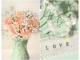 Baby S Breath Bouquets Carnation And Baby Breath Bouquet Colorful Canation Flower Ideas
