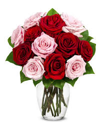 How Much Does A Dozen Roses Cost A Dozen Red U0026 Pink Roses At From You Flowers