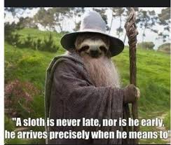 Sloth Meme Jokes - love slow die whenever sloths